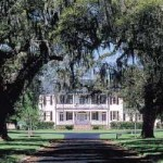 A Million Miles from Everything at Litchfield Plantation