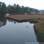 Marsh near Pecan Grove Plantation, Hampstead, North Carolina