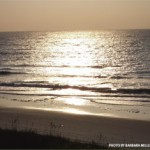 North Myrtle Beach, Top-notch Recreational Activities