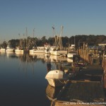 Calabash – NC Great Seafood at Affordable Prices